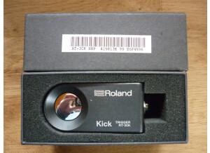 Roland RT 30k 3.JPG
