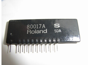 80017Aroland.JPG