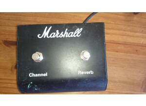 ped marshall.JPG