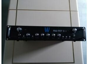 Warwick Pro FET 3.3
