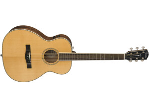 Fender PM-TE Travel Standard