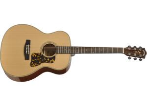 Headway Guitars HF-590AS