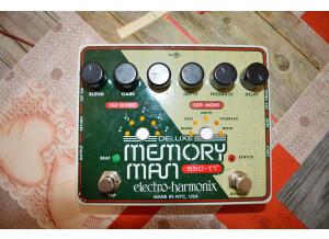 Electro-Harmonix Deluxe Memory Man 1100-TT (5140)