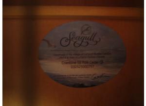 Seagull S6 Cedar QI