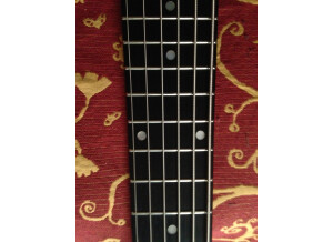 Ken Smith BT custom 6 cordes (88984)