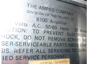 Ampeg B-100