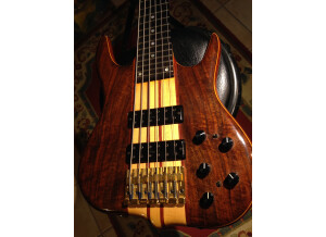 Ken Smith BT custom 6 cordes (89749)