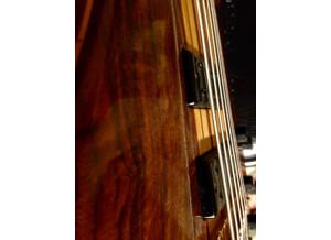 Ken Smith BT custom 6 cordes (96119)