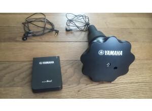Yamaha SB5x
