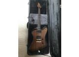 vend une firebird de luthier an acajou micro seymour