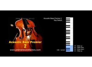 Premier Sound Factory Acoustic Bass Premier 2