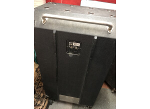 Ampeg SVT-810E Heritage