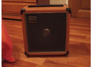 Roland Cube 20 Vintage