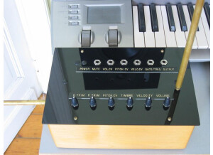 Paia THEREMAX THEREMIN