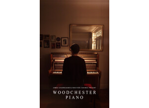 Fracture Sounds Woodchester Piano