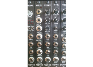 Erica Synths Pico T?G