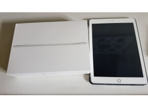 Apple iPad Air 2 (87152)