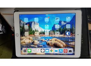 Apple iPad Air 2 (73832)