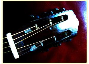 Harmony (String Instruments) H165