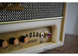 FX Amplification Gold Digger