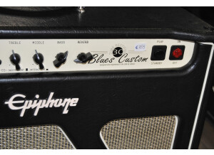 Epiphone Blues Custom (77663)