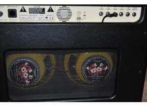 Epiphone Blues Custom (249)