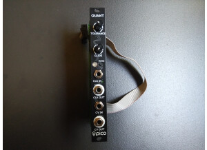 Erica Synths Pico Quant