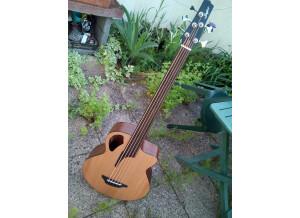Fretleess acoustic 5 (1)