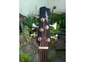 Fretleess acoustic 5 (3)