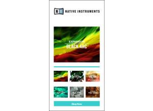 Native Instruments Vintage Heat (78381)