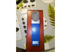 Blue Microphones The Pop