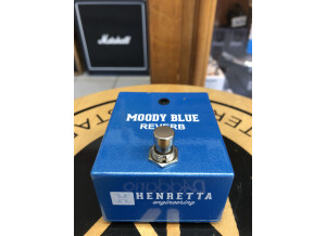 Henretta Engineering Moody Blue Reverb