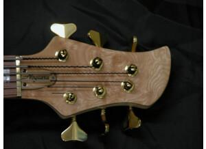 Noguera Custom 6