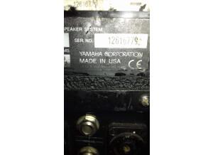 Yamaha C112V