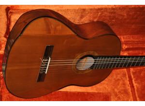 Vox MV50 Rock (19323)