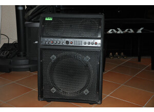 Trace Acoustic TA 300