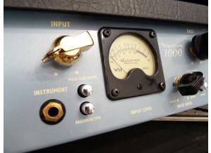 Ashdown KLYSTRON 1000 Wide Custom