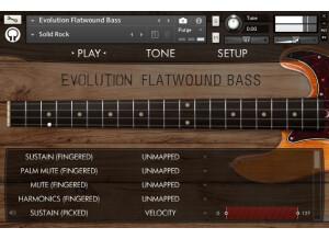 Orange Tree Samples Evolution Flatwound Bass