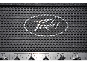 Fryette Amplification PittBull Fifty ST Head