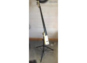 Ns Design NXT Double Bass
