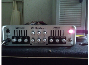 Mesa Boogie M-Pulse WalkAbout