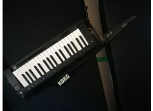 Korg RK-100S