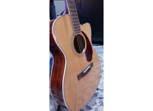 Fender PM-3 Standard Triple-0