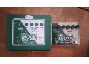 Electro-Harmonix Deluxe Memory Man 550-TT (2246)