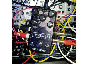 Neunaber Technology Immerse Reverberator MKII (3058)