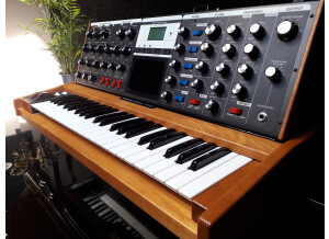 Moog Music Minimoog Voyager Performer Edition (54891)