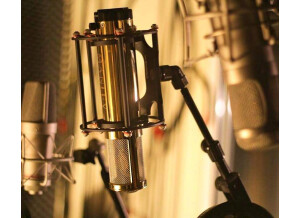 Manley Labs Gold Reference