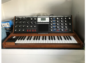 Moog Music Minimoog Voyager Performer Edition (42078)