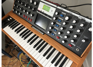 Moog Music Minimoog Voyager Performer Edition (74523)