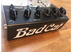 Bad Cat 2-Tone